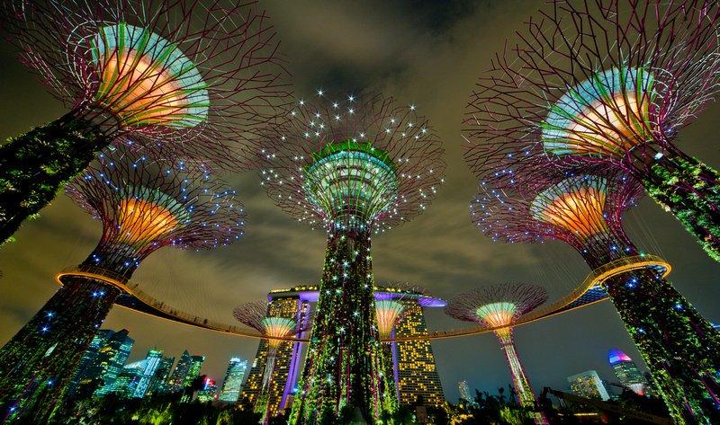 """""""Супер"""" дърветата на Сингапур"""
