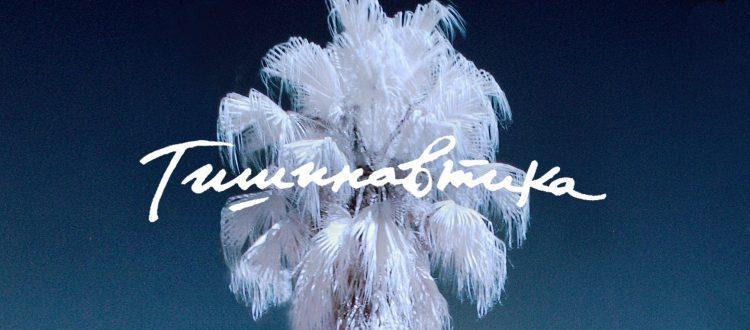 """""""Тишинавтика"""" – сетивен концерт / 14-ти ноември в Музея за съвременно изкуство"""