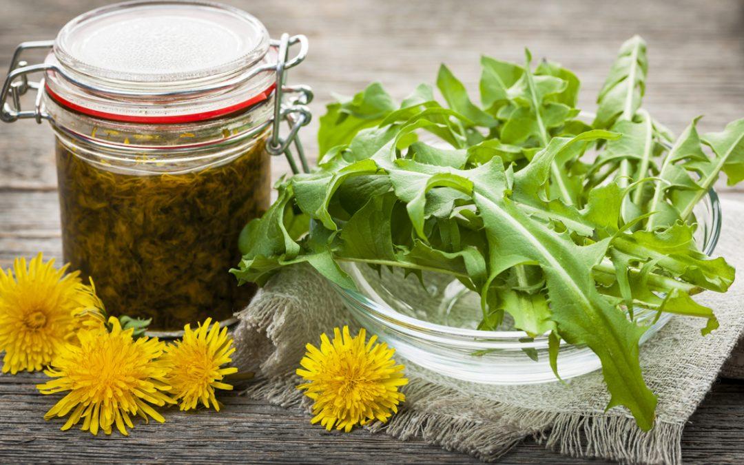 Как да си вземем здраве от билките в природата